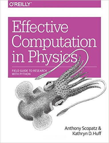 effectivecomputationinphysics