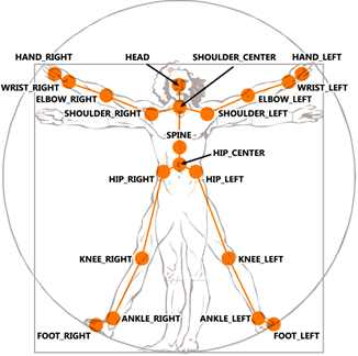 kinect sdk 1 skeletons names of joints in body each part of the body listed in the diagram returns a corresponding joint which gives its position and other useful data