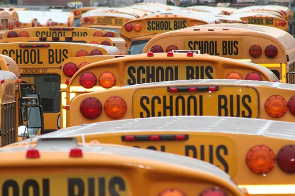 bostonschoolbus