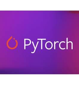 PyTorch Scholarship Challenge